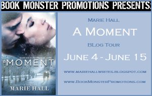 A Moment Tour banner (2)