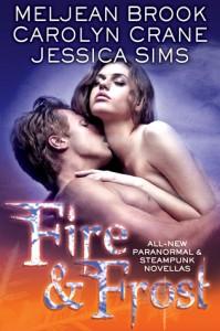 Fire & Frost by Meljean Brook